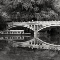 L9032361 Bridge-1 by Brian Mosley