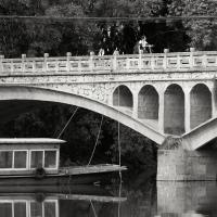 L9032361 Bridgecrop-1 by Brian Mosley in Regular Member Gallery