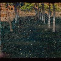 Blend - Trees In Cadiz by woodmancy