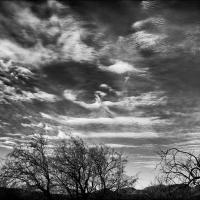 Gxr A16 Tucson Busy Sky  1 Of 1 by woodmancy