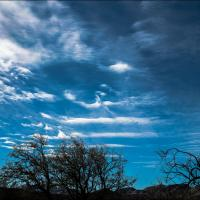Gxr A16 Tucson Busy Sky Color  1 Of 1 by woodmancy