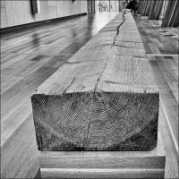 Gxr Mmount Cv 21 Art Gallery1 Of 1 by woodmancy
