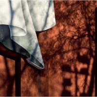 Gxr Mmount Rokkar 45-2.0 - Tree Shadow Curtain by woodmancy