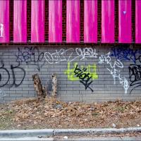 Gxr Mmount Sigma 21-35 Pink Slats by woodmancy