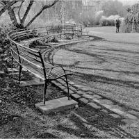Leica Minilux Park Bench In Sun by woodmancy