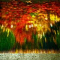 Lensbaby - Fall 1000-2 by woodmancy