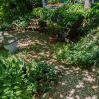 Pentax K-01 Pentax 14mm - Shade Garden by woodmancy in woodmancy