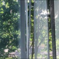 Pentax Q 47mm - View From Window by woodmancy in woodmancy