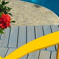 Ricoh Gxrp10 Summer In Yellow by woodmancy