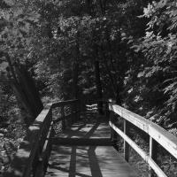 Ricoh P10 - Rattray Marsh Boardwalk by woodmancy