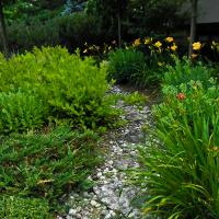 Stone Path With Dr Mode1 Of 1 by woodmancy