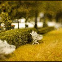 Summertime Blues - 2 by woodmancy