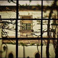Window Through Vines1 Of 1 -2 by woodmancy