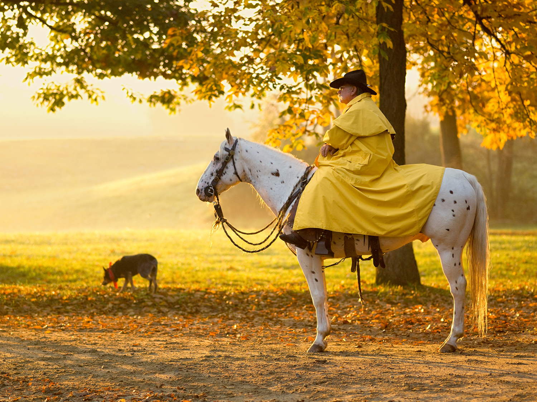 Yellow Slicker by fotografz in fotografz
