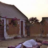 Rajasthan Morning