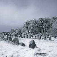 Carnac Megaliths (infrared) by Lisa