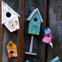 Housing Meltdown by Shelby Frisch in Shelby Frisch