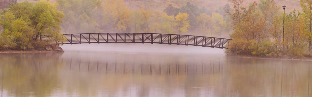 Morning Fog by Shelby Frisch in Shelby Frisch
