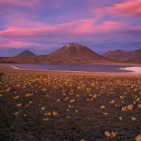 Altiplano at dusk by Lars in Regular Member Gallery