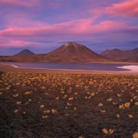 Altiplano at dusk by Lars in Regular Member Gallery