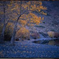 Convict Lake by Lars in Regular Member Gallery