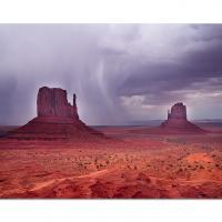 Mittens Storm by cs750 in Regular Member Gallery