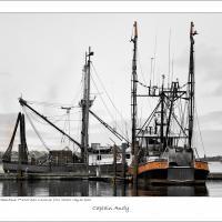 Colson 120520 Jsc 0902-edit-edit-frameshop by Joe Colson in Regular Member Gallery
