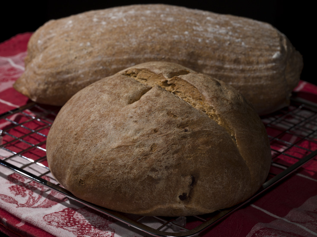 Apricot And Whole Wheat Breads. by engel001 in Regular Member Gallery