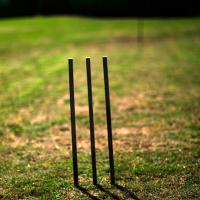 Backyardcricket by PeterA in Regular Member Gallery