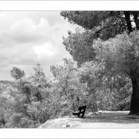 Yaar by Ben Rubinstein in Jerusalem