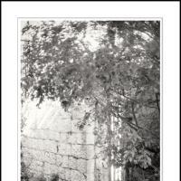 Gaon by Ben Rubinstein in Contemplation (part 2)