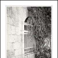 Givon by Ben Rubinstein in Contemplation (part 2)