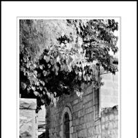 Iddo The Prophet by Ben Rubinstein in Jerusalem