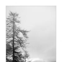 Cloudy Dawn by Ben Rubinstein