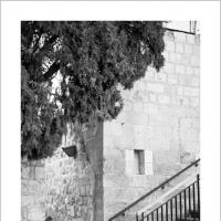 Mincha by Ben Rubinstein in Jerusalem