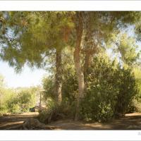 Park by Ben Rubinstein in Ben Rubinstein