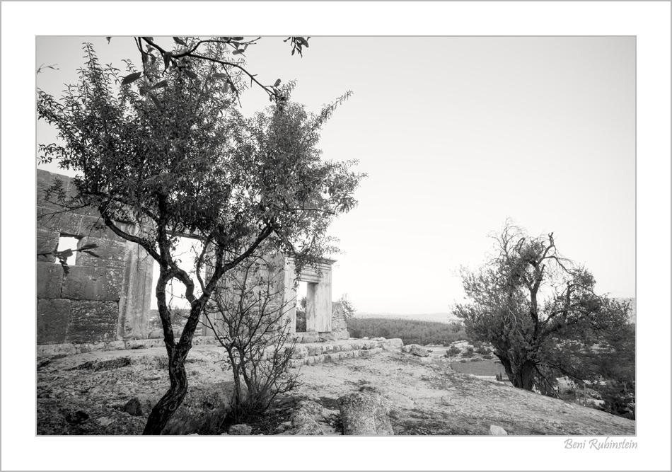 Rashbi Old2 by Ben Rubinstein in Tzfat (Safed)