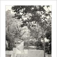 Stepping South by Ben Rubinstein