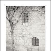 Yosef Haim by Ben Rubinstein in Contemplation (part 2)