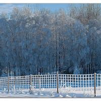 Fence by Arne Hvaring