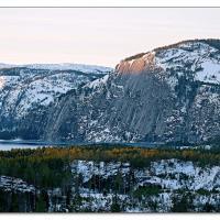 Nisser by Arne Hvaring