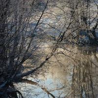 Reflections2 by Arne Hvaring in Arne Hvaring