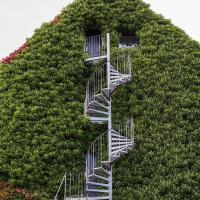 Stairs  2 by Arne Hvaring in Arne Hvaring