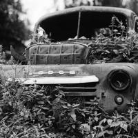 Dodge Truck in Hope, AK by bensonga