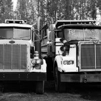 Big Trucks For Sale by bensonga in bensonga