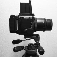 RZ67 Pro IID and Gitzo Pan Tilt Head by bensonga