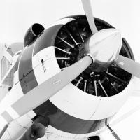 Civilian Air Patrol Beaver by bensonga