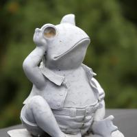 Mister Frog by bensonga