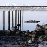 Ship Creek Pilings At Small Boat Harbor by bensonga in bensonga
