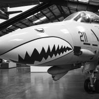 F-14A Tomcat by bensonga in bensonga